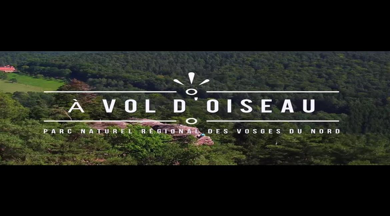 ALSACE : Les Vosges du nord en survol